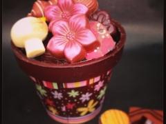 Belle Fleur Fine Chocolates Rozelle
