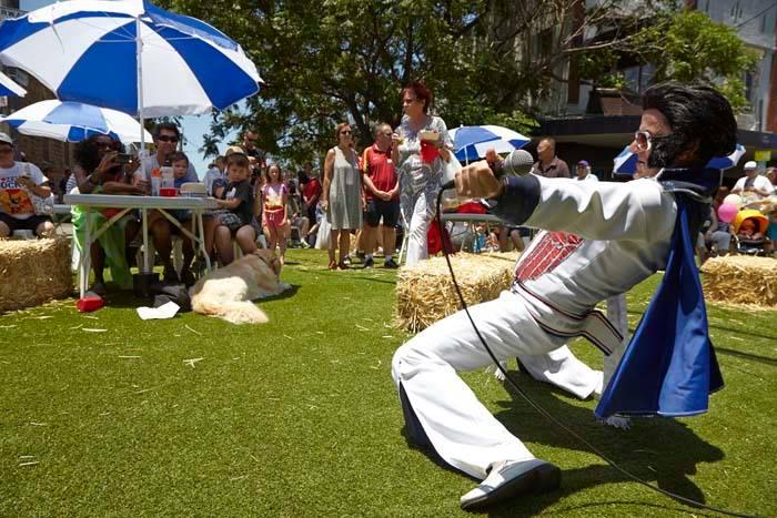 Elvis struts his stuff at the Rozelle Village Fair.jpg